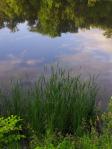 © Clr 2014 rivière Yamaska