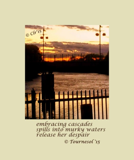 murky waters of despair haiga