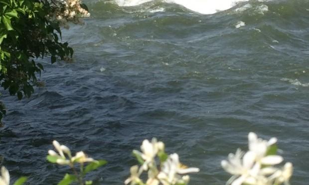 risky sailing (haibun)