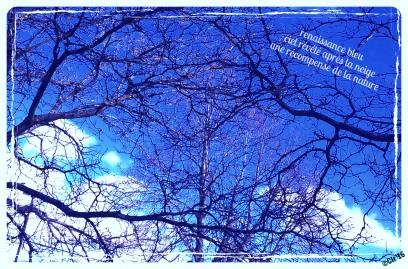 renaissance blue