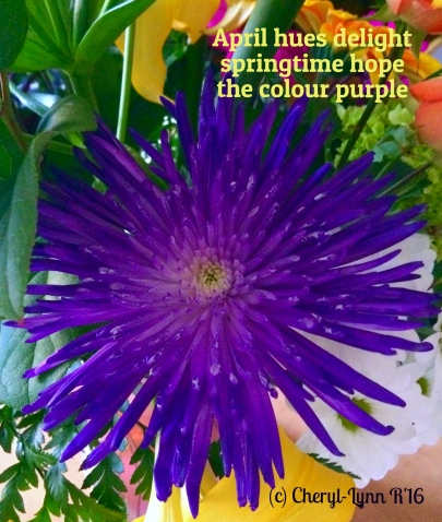 spring s hope