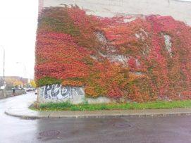 autumn-buildings