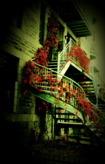 autumn-staircase