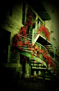 autumn-staircase
