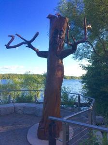 (c) clr '2021 Lake Wilcox, Richmond Hill, ON. Canada